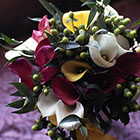 003-broomfield-wedding-photography-jason-noffsinger-d00483