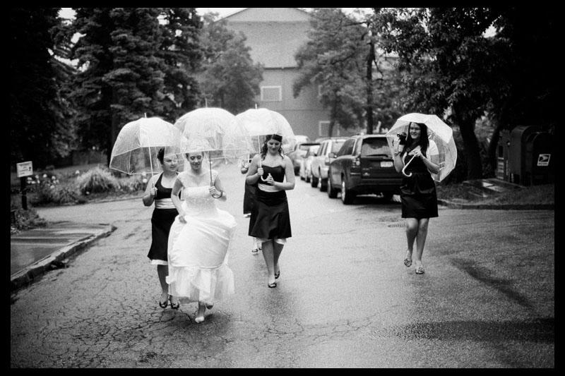 Excellent Wedding Rain Umbrellas 800 x 533 · 116 kB · jpeg