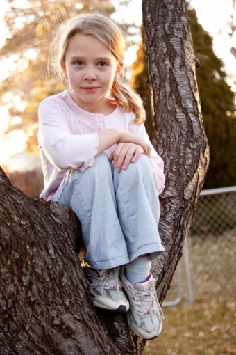 Six year old girl sitting in a tree