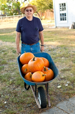 Grandpa pushes a wheel barrow full of pumpkins